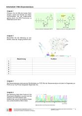 Ernst Klett Verlag - - Lehrwerk Online - Natura-Online - Schulbücher ...