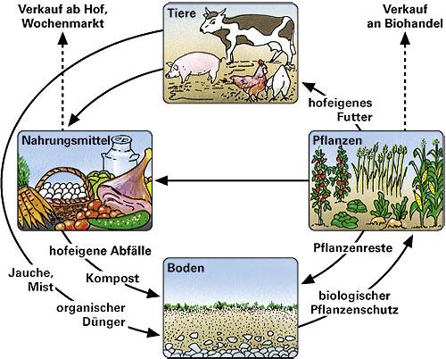 biologischer pflanzenschutz vor und nachteile